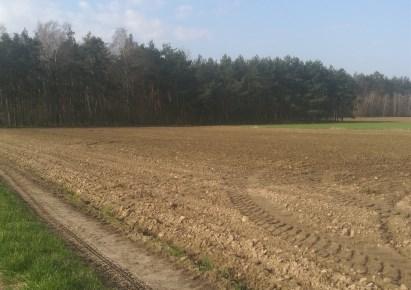 działka na sprzedaż - Koluszki (gw), Przanowice